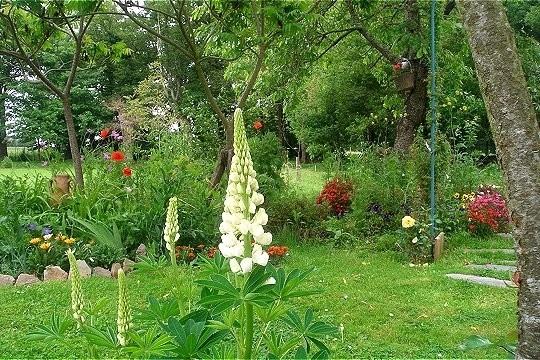 Mon jardin Poesie11