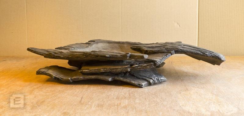 my new work - atelier bonsai Element - Page 10 Bonsai11