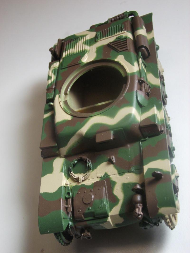 renault r35 +canon de 25 au 1/35 heller  - Page 4 Dscf6318