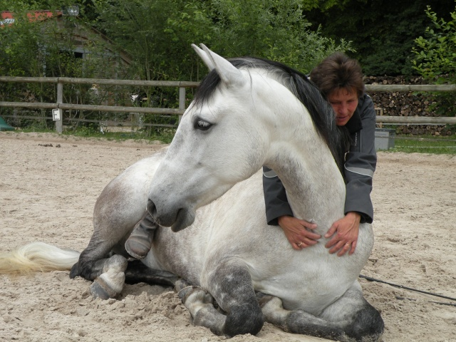 CONCOURS PHOTOS : La St Valentin équine Dscn3310