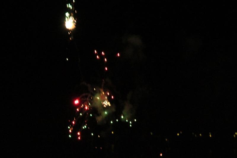 Happy New Year 2015 Img_6713