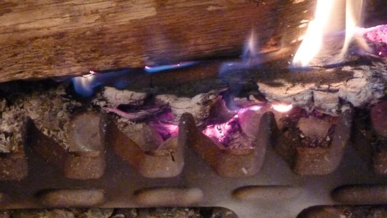 Caldo de piedra: Cuisine préhispanique P1060112