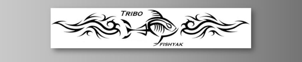 FÓRUM TRIBO FISHYAK