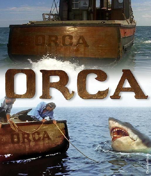 O Orca do Franciss Orcaww10