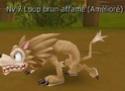 Guide de Dragotaka , Bestiaire et map (en construction) Loups_10