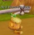 Guide de Dragotaka , Bestiaire et map (en construction) Woodie12