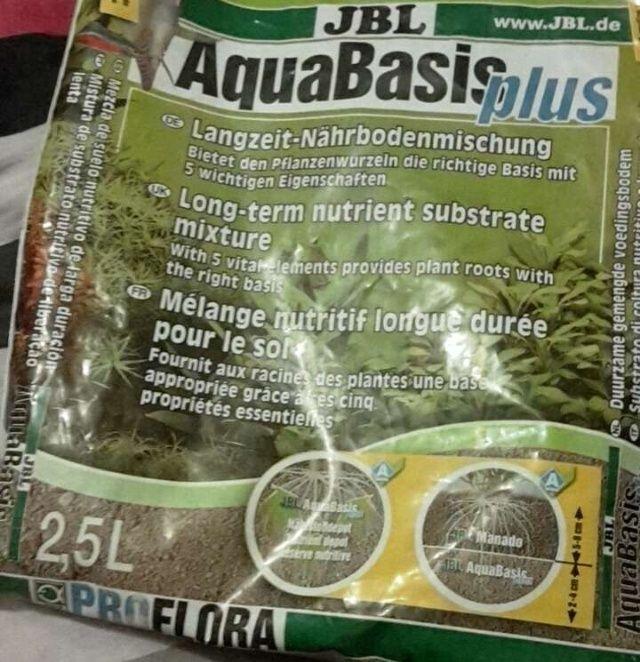 Nettoyage de l'aquarium Image-12