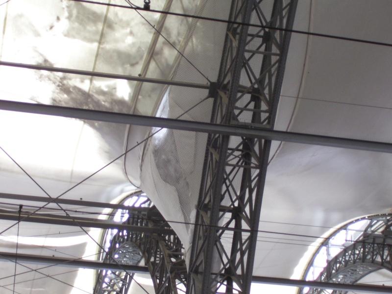 Meine Bilder von der modernen Bahn - Seite 2 100_7244