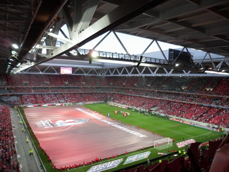 Grand Stade Lille Métropole Stade10