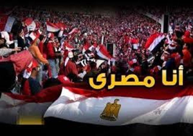 الذكرى الرابعة لثورة 25 يناير 2011م.واحتفال مصر بالذكرى( الـ63 ) لعيد الشرطة. 813