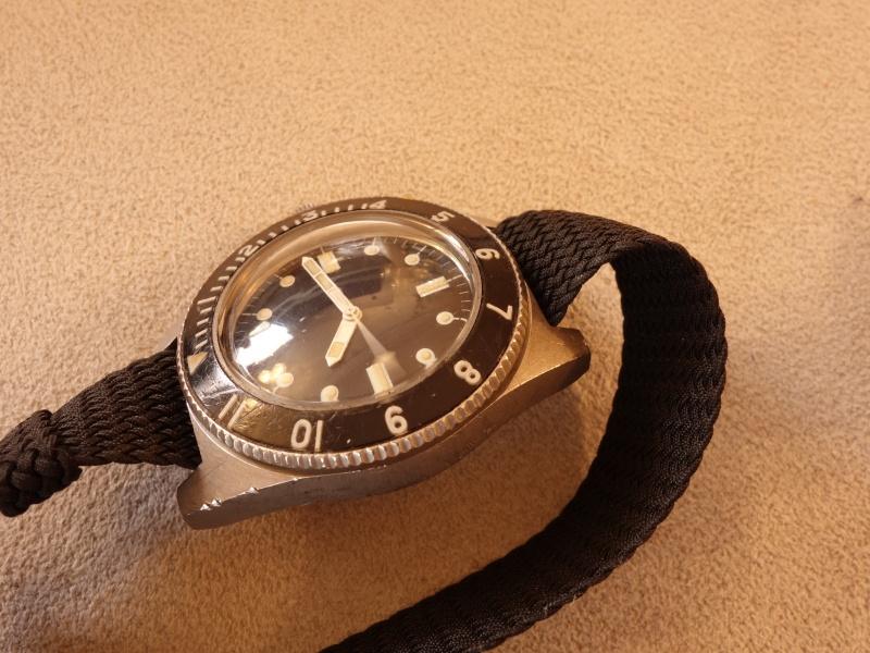 Ma plongeuse de Février Dsc01313