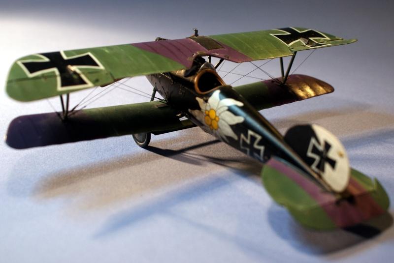 "Albatros D.V ""Edelweiss"" du Lt. Otto Kissenberth, Jasta 16b, juin 1917. C0112"