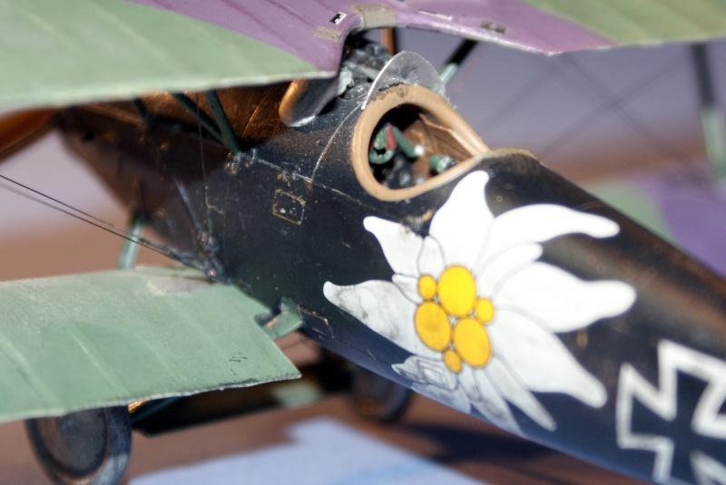 "Albatros D.V ""Edelweiss"" du Lt. Otto Kissenberth, Jasta 16b, juin 1917. C0211"