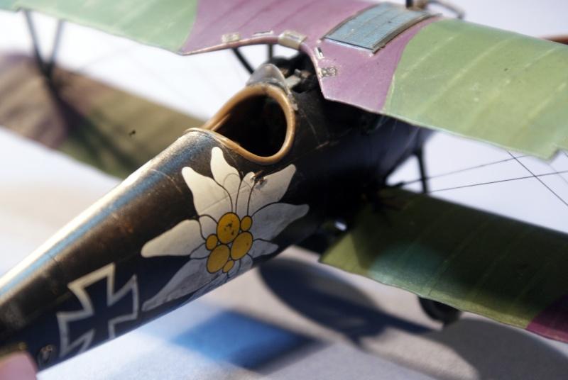 "Albatros D.V ""Edelweiss"" du Lt. Otto Kissenberth, Jasta 16b, juin 1917. C0511"