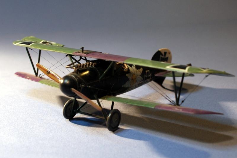 "Albatros D.V ""Edelweiss"" du Lt. Otto Kissenberth, Jasta 16b, juin 1917. C0710"