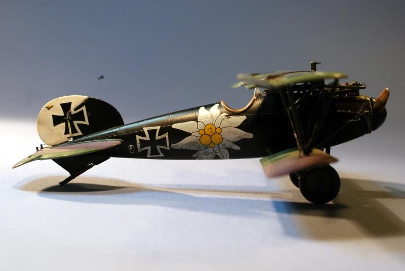 "Albatros D.V ""Edelweiss"" du Lt. Otto Kissenberth, Jasta 16b, juin 1917. C1310"