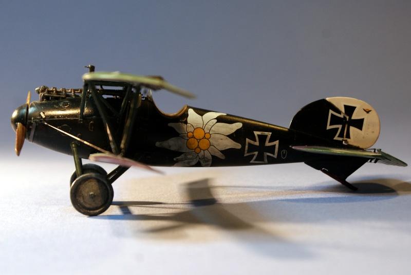 "Albatros D.V ""Edelweiss"" du Lt. Otto Kissenberth, Jasta 16b, juin 1917. C1410"