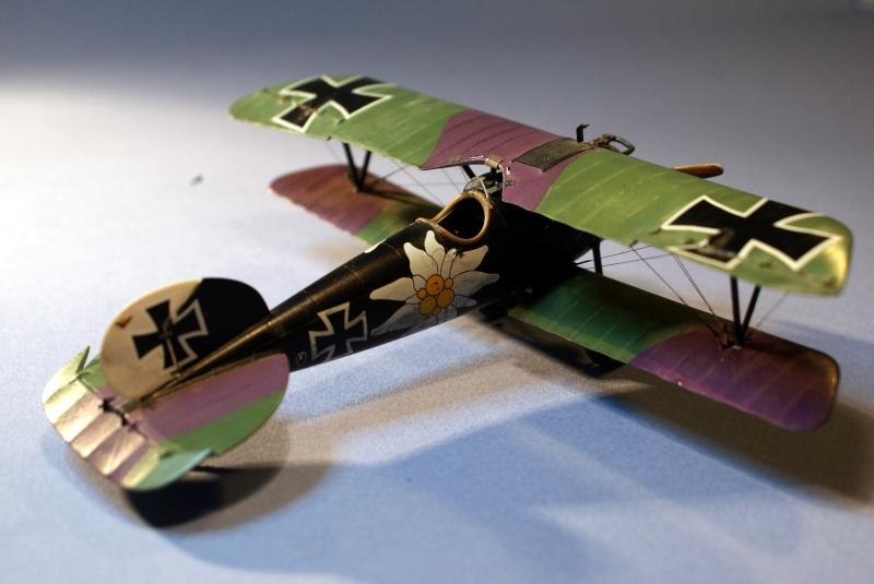 "Albatros D.V ""Edelweiss"" du Lt. Otto Kissenberth, Jasta 16b, juin 1917. C1510"
