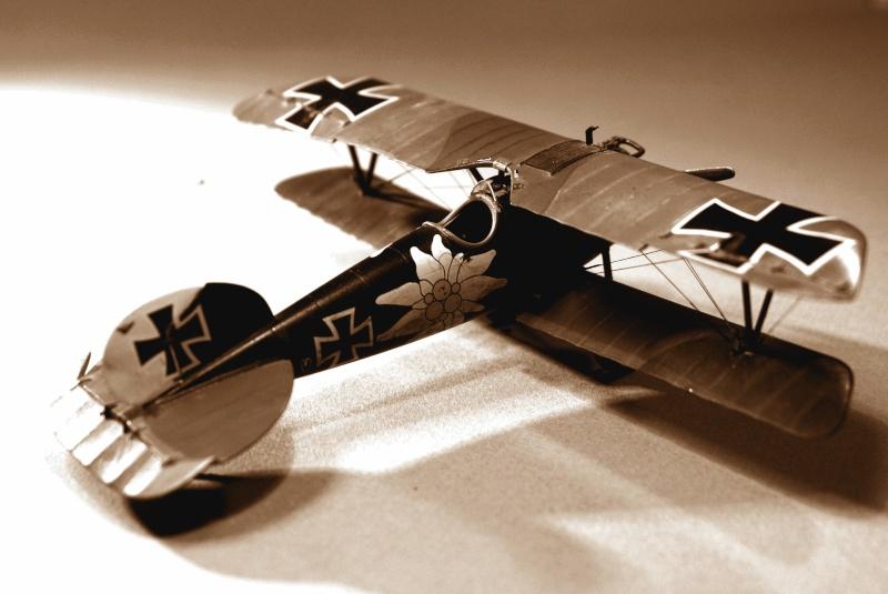 "Albatros D.V ""Edelweiss"" du Lt. Otto Kissenberth, Jasta 16b, juin 1917. C1511"