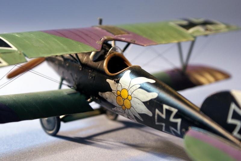 "Albatros D.V ""Edelweiss"" du Lt. Otto Kissenberth, Jasta 16b, juin 1917. C1610"
