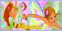 Version 31 : Winx Harmonix Nouvea28