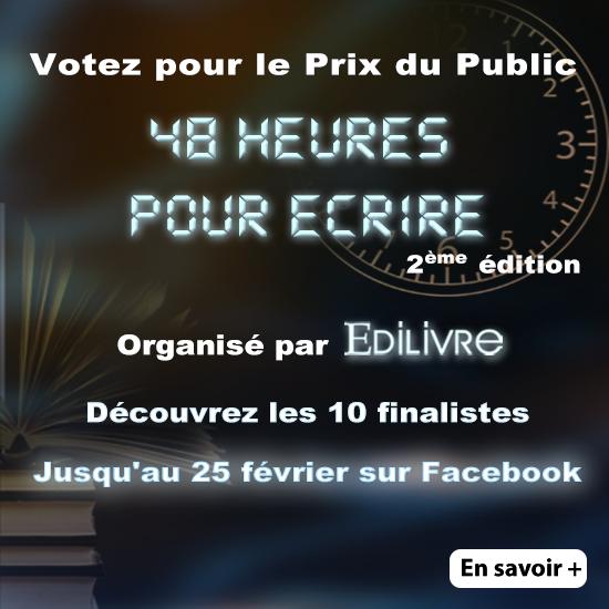 """Découvrez les 10 finalistes de """"48 heures pour écrire"""" 550x5510"""