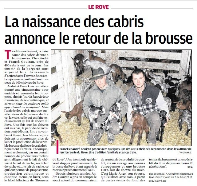 LA FAUNE ANIMALE MEDITERRANEENNE - Page 12 4029