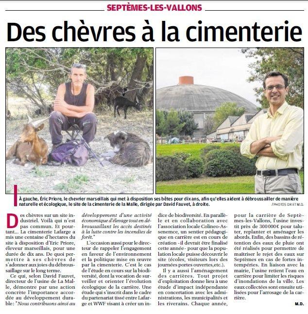LA FAUNE ANIMALE MEDITERRANEENNE - Page 12 4036