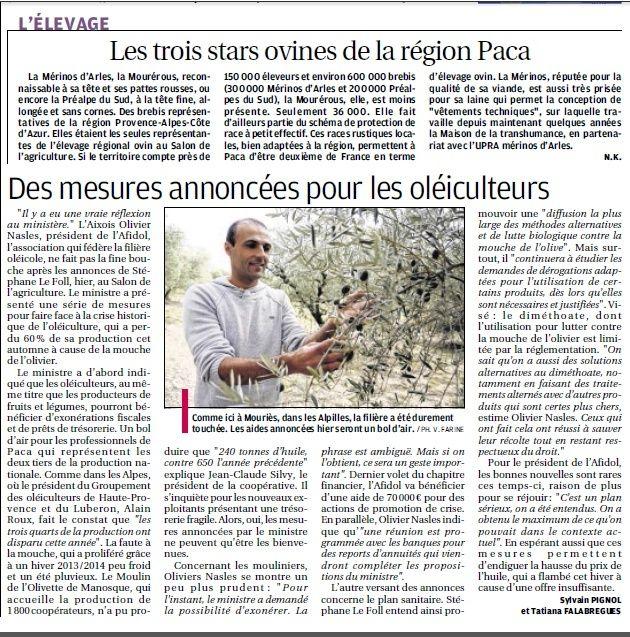 LA FAUNE ANIMALE MEDITERRANEENNE - Page 12 4125