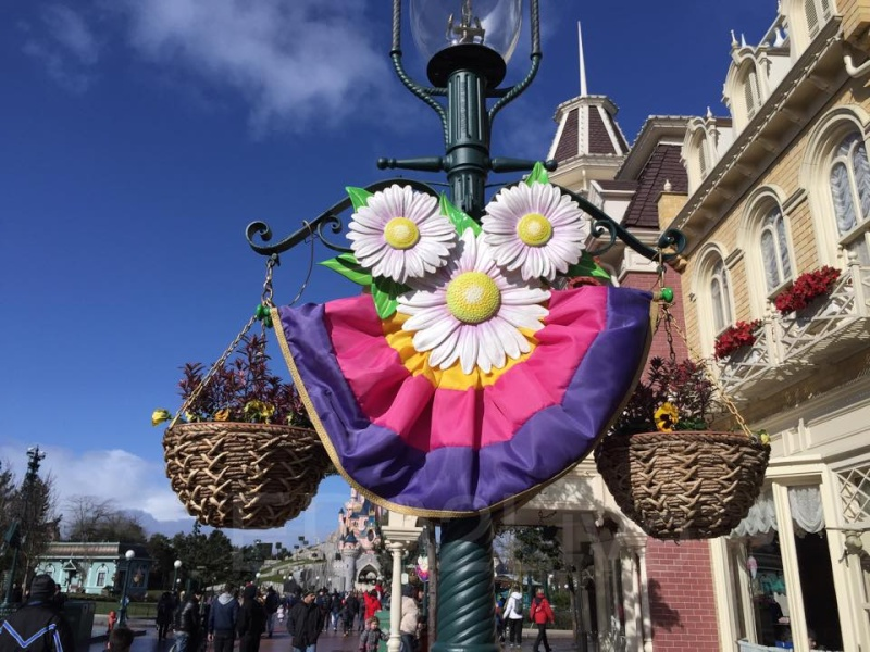 Festival du Printemps du 1er mars au 31 mai 2015 - Disneyland Park  - Page 6 10429810