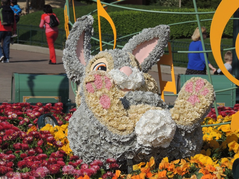 Festival du Printemps du 1er mars au 31 mai 2015 - Disneyland Park  - Page 2 Jtyd10