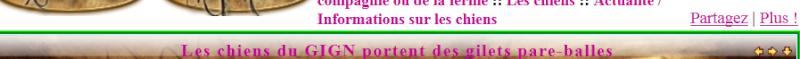 Disparition bouton j'aime sur tous les moteurs et impossibilité de partager sous Google Chrome Dispar12