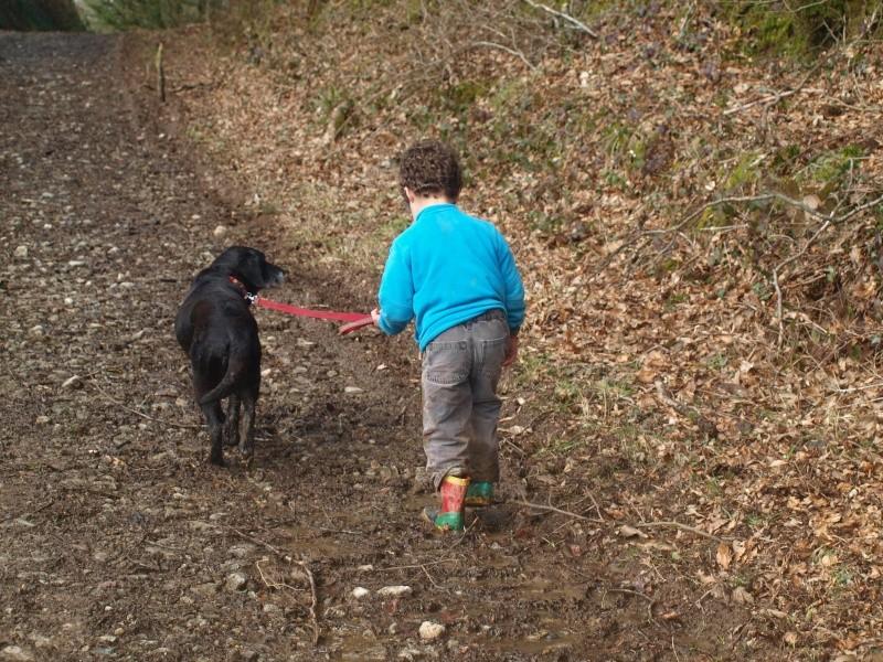 Suzy, petite croisée labrador noire de 14 ans - Page 4 P2231512