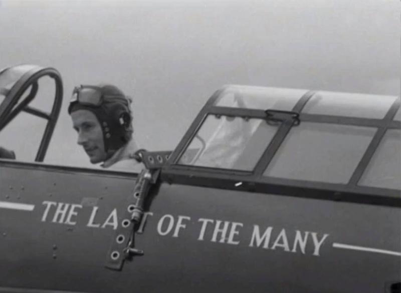 The Last of The Many - Hurricane Mk IIc 10952910