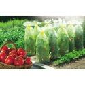 Housse tomates 20166-10