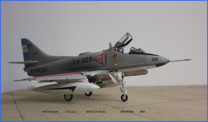 A4Q Skyhawk ARGENTINA Img_8321