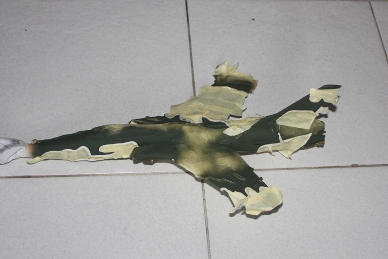 F 105 Thunderchief - Page 2 Img_8418