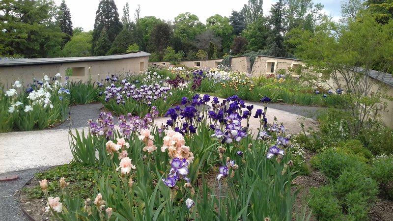 Parc floral d'Orléans Source10