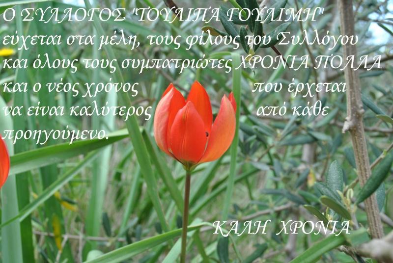 ΧΡΟΝΙΑ ΠΟΛΛΑ. - Σελίδα 3 Dsc_1410