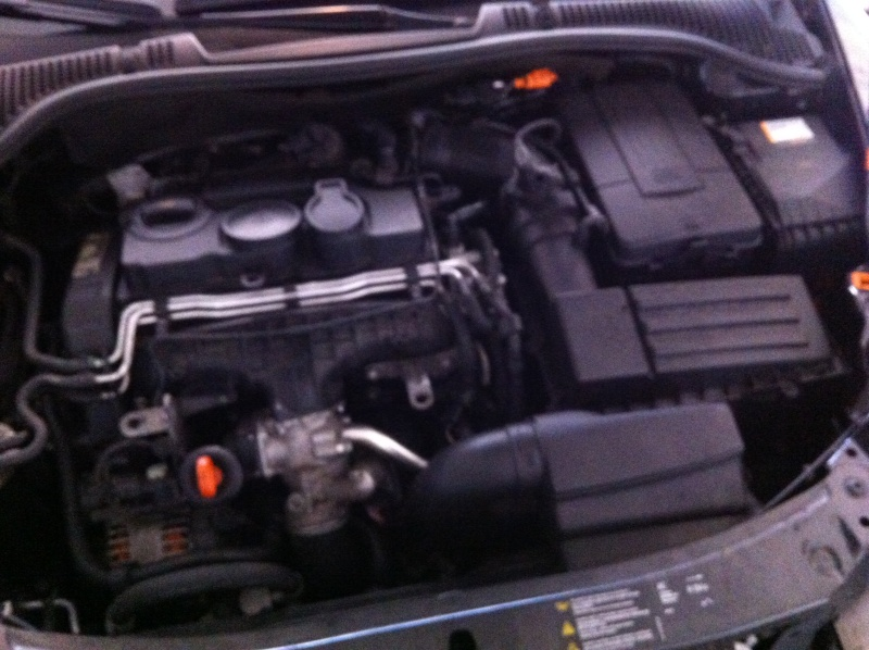 "Octavia V/RS-MK2 ""Black Pearl"" - Page 3 Img_1224"