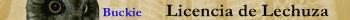 ficha de kourt D'Laboir Lechuz11