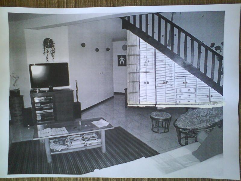 Aménager sous un escalier ..  COCO et bricolos, question please en p2 Sous_e10