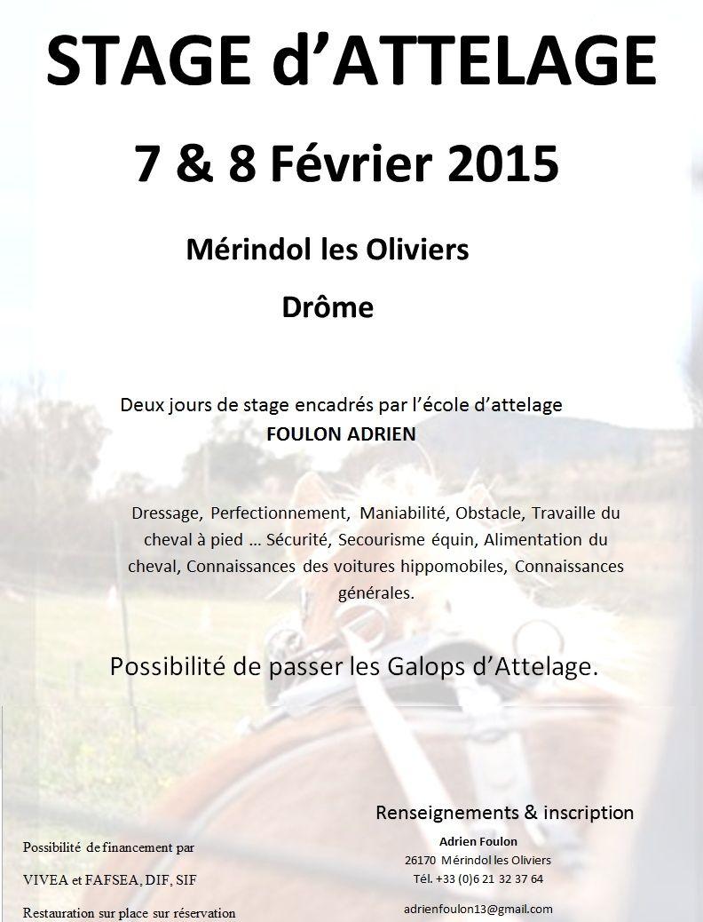 Stage Attelage Février 2015 Stage10
