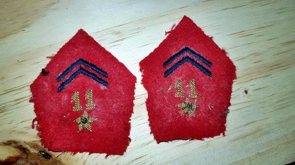 Identification paire patte de col . 40330310