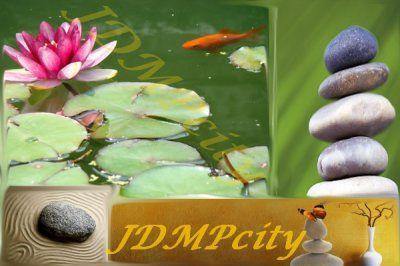 JDMP 4.0