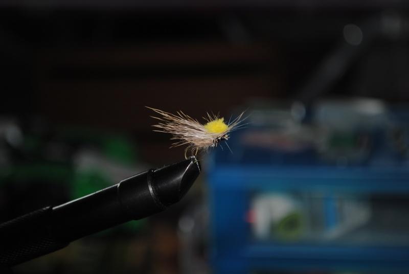 Test canne V 360 7/3 de Tenkara-Fly-Fishing - Page 2 Dsc_0510