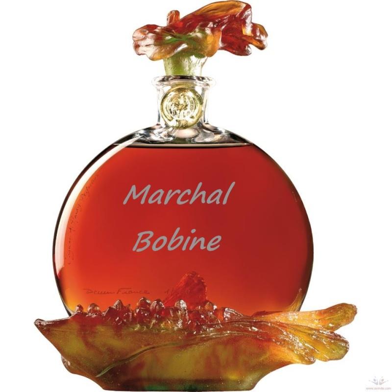 résistance bobine sev marchall cognac Cognac10