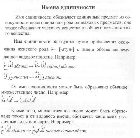 Интенсивный курс арабского языка. Ибрагимов Aez_ea10