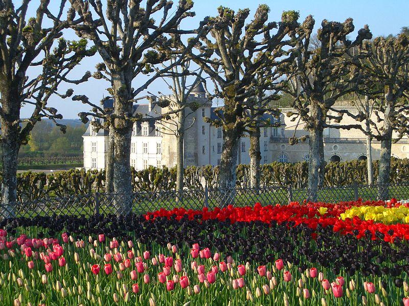 Chateaux de la Loire 803de010