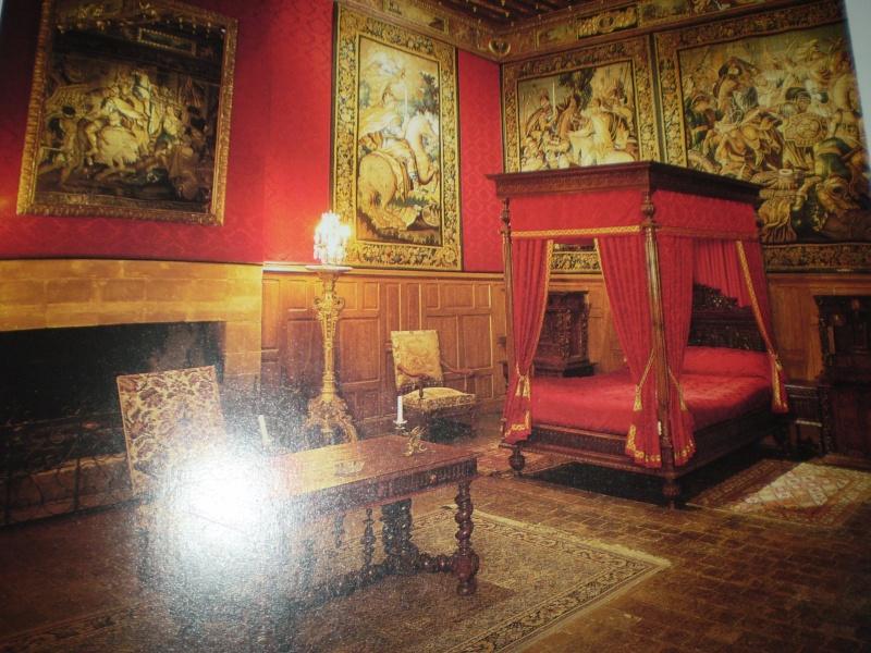 Chateaux de la Loire Brissa11